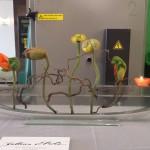 Vase ELLIPSE mit Stecker Töpfli orange