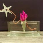 Vase QUER transparent mit Stecker Glastropfen ALETSCH und Stern mit Loch